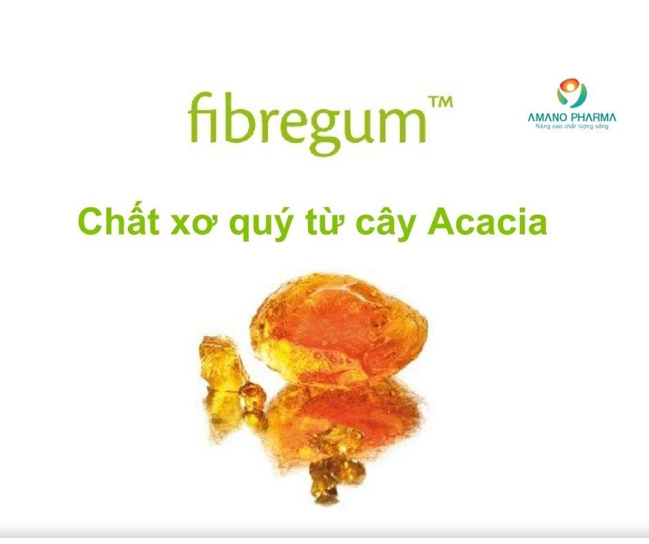 Fibregum B là gì, lợi ích của Fibregum