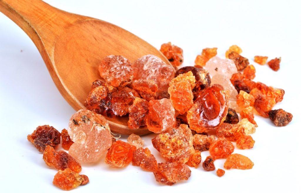 Fibregum là gì? Chất xơ quý từ cây Acacia và công dụng tuyệt vời trên hệ tiêu hoá